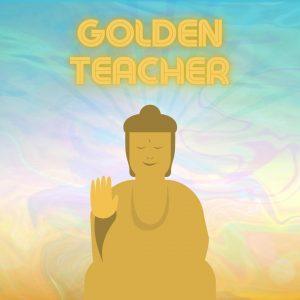 Golden Teacher magic mushroom statue with psychodelic background